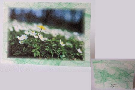 285 g/m2 naturaalvalge, väljast reljeefse pinnaga