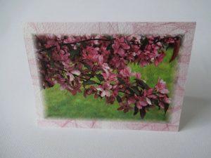 Kevad 03
