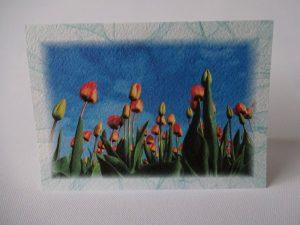 Kevad 07