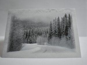 Talv 06