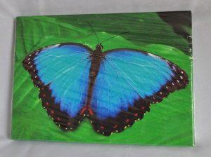 """Lõuend """"Sinine liblikas"""""""